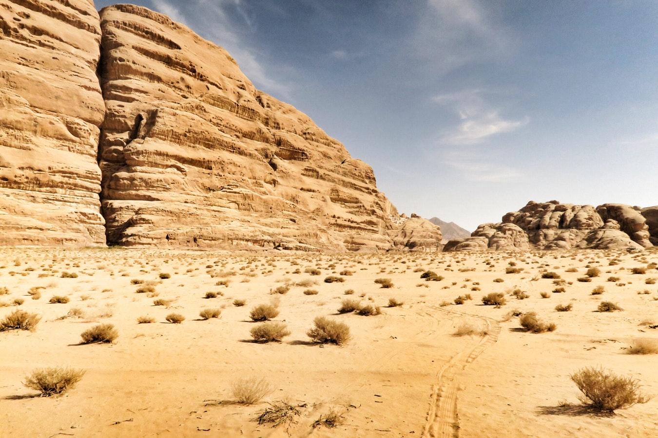 Enteignungsversuch der Qumran-Rollen