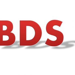 Der Antisemitismus der anti-israelischen Boykott-Kampagne (BDS) in Deutschland